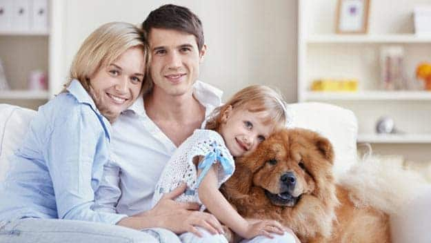 Wills & Trusts dog-young-family Direct Wills Ramsey